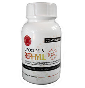 Lipocure Rephyll [object object] Medical Shop rephyll lipocure
